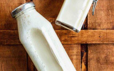 Sojamilch selber herstellen – so schmeckt's besser als gekauft!