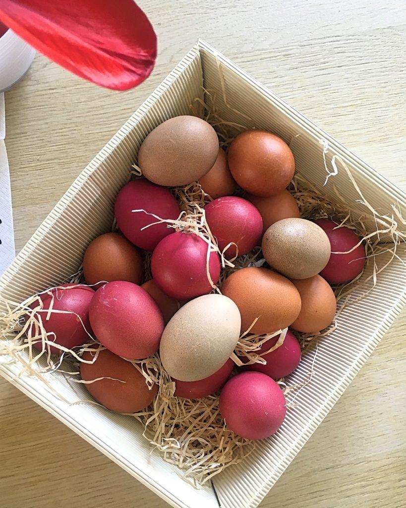gefärbte Eier in einem Korb