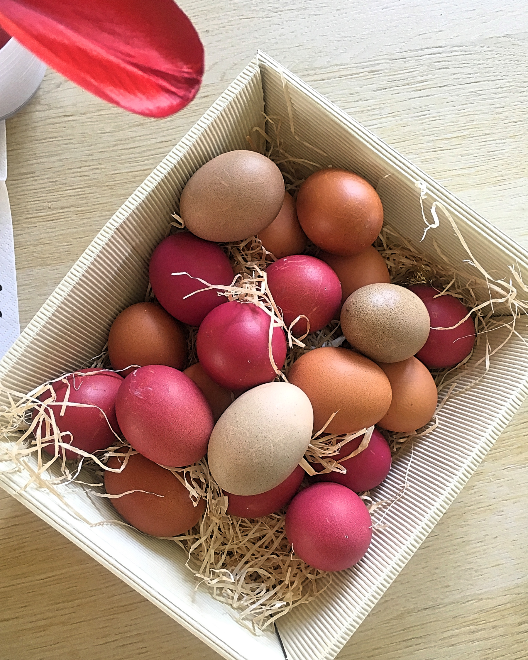 Zero Waste Eierfärben