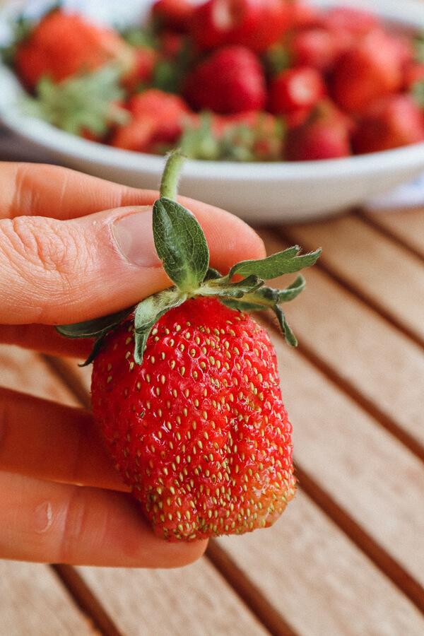 Erdbeeren Pestizide: So belastet sind erdbeeren