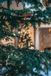 Christbaum: Ein tannengrüner Nadelbaum ist mit einer Lichterkette beleuchtet. Im Hintergrund ist eine weitere beleuchtete Tanne. Die Lichter sind verschwommen.