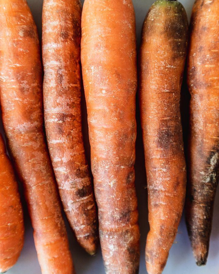 Schrumpelige Karotten mit braunen Spitzen müssen nicht weggeworfen werden.
