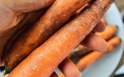 So werden schrumpelige Karotten wieder knackig: wie du Möhren richtig lagerst und verwertest