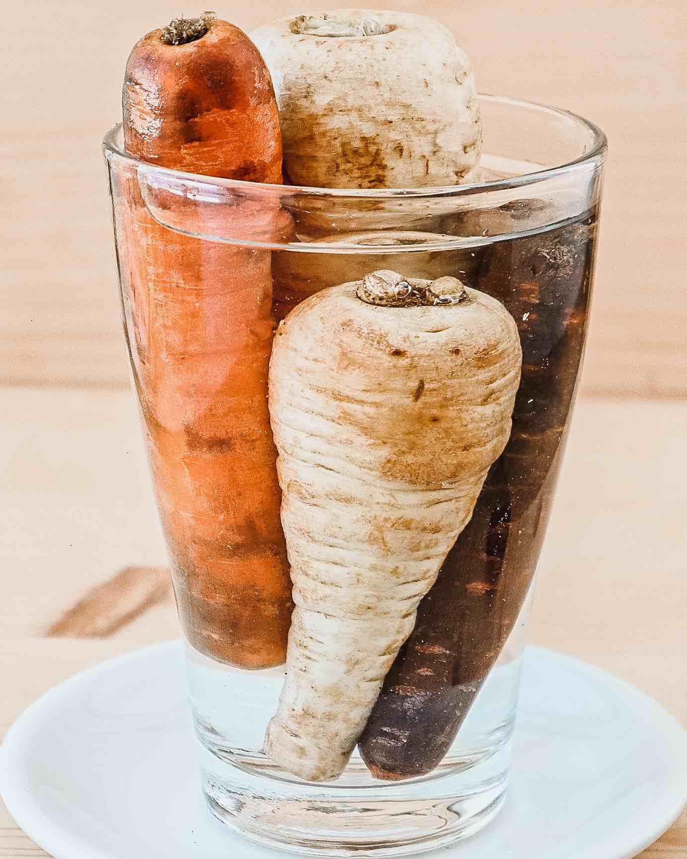 Schrumpelige Karotten in einem Wasserglas