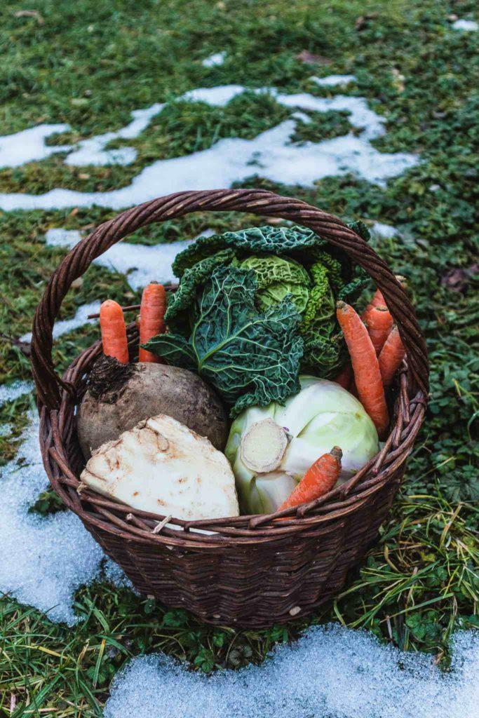 Gemüse und Obst im Winter – In dieser Liste findest du viel mehr Auswahl als du denkst!