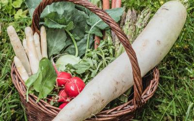 Gemüse & Obst im Frühling – Das gibt es jetzt in Saison