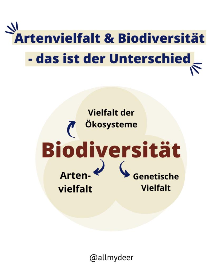 Diese Grafik zeigt, dass Artenvielfalt ein Teil der Biodiversität ist.